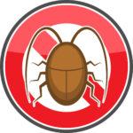 ゴキブリ の出没!大騒ぎする前に駆除する場所と おすすめの根絶方法